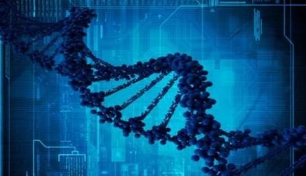 Nuevo software argentino para el estudio del genoma